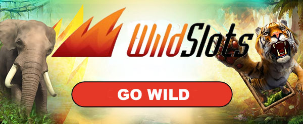 Play at WildSlots casino